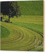 Summer In Switzerland Wood Print