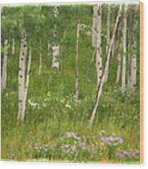 Summer In The Colorado Mountains Wood Print