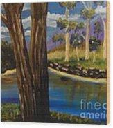 Summer In The Snowy River Region Wood Print