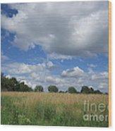 Summer Iowa Prairie Wood Print
