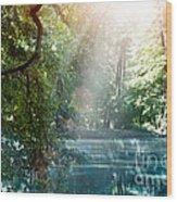 Summer Lake Wood Print