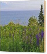 Summer Lake View Wood Print by Michelle Ressler