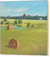 Summer Meadow Wood Print by Celine  K Yong