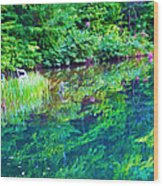 Summer Monet Reflections Wood Print