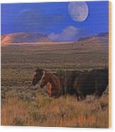 Summer Moon  Wood Print by Jeanne  Bencich-Nations