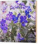 Summer Pansies Wood Print