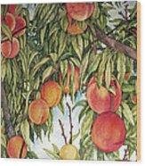 Summer Peaches Wood Print by Helen Klebesadel