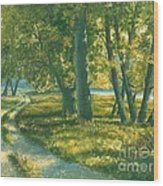 Summer Place Wood Print