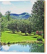 Summer Pond And The Blueridge Wood Print