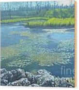 Summer Pond Wood Print