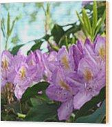Summer Rhodies Flowers Purple Floral Art Prints Wood Print