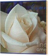 Summer Rose Sapphire Border Wood Print