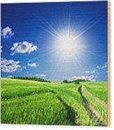 Summer Rural Landcape Wood Print