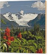 Summer Scenic Of Grewingk Glacier And Wood Print