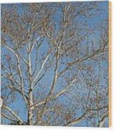 Summer Sky Winter Day Wood Print