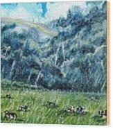 Summer Storm Wood Print