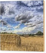 Summer Straw Bales Wood Print