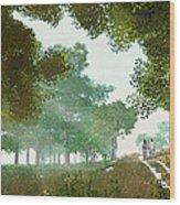 Summer Stroll Wood Print