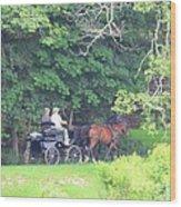 Summer Stroll Wood Print by Elizabeth Dow