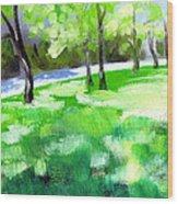 Summer Sunshine In South Carolina Wood Print