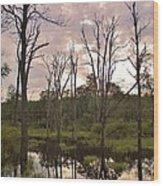 Summer Swamp  Wood Print