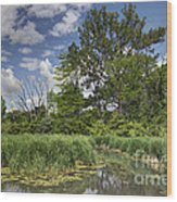 Summer Time At Moraine View State Park Wood Print
