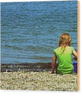 Summer Time On The Coast Of Maine Wood Print