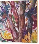 Summer Tree Wood Print by Paula Marsh
