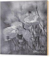 summer whipsers IIII Wood Print