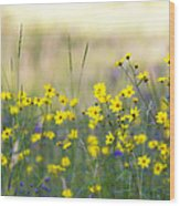 Summer Wildflowers On The Rim  Wood Print