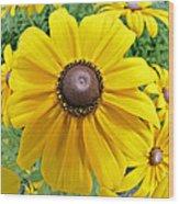 Summers Bloom Wood Print