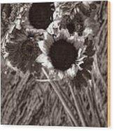 Summer's End Xxvi Wood Print