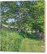 Summertime At The Farm Wood Print