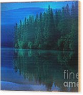 Summertime Blues Wood Print by The Stone Age