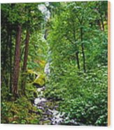 Summertime In The Cascades Wood Print