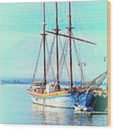 Summertime Will Be Soon And Then We Will Sail Away Again  Wood Print