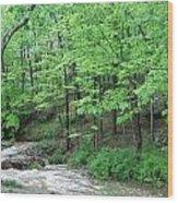 Summertime Walnut Creek Wood Print