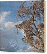 Sun And Wind Wood Print