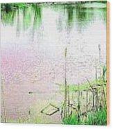 Sun Dappled Water Under A Green Sky Wood Print
