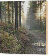 Huckleberry Road Wood Print