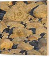 Sun Kissed Rocks Wood Print
