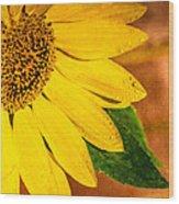 Sun-kissed Sunflower Wood Print