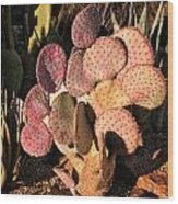 Sun On Cactus Wood Print