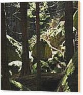 Sun On Moss Wood Print