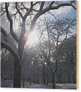 Sun Over The Park Wood Print