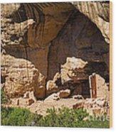 Sun Point View Mesa Verde National Park Wood Print