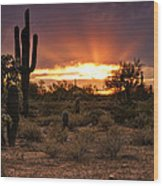 Sun Rays Over The Sonoran Desert  Wood Print
