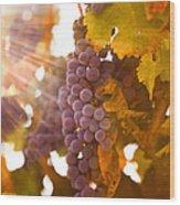 Sun Ripened Grapes Wood Print