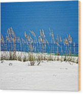 Sun Sand Surf Wood Print