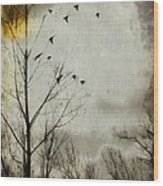 The Sun Splashed Unto A Gray Day Wood Print